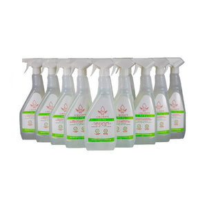 R5 Liquidate antibacterial surface spray, sanitiser / disinfectant 750 ml x 12 bottles per box Quat Free Biodide