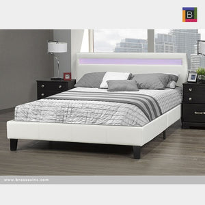 Dhara Queen Bed
