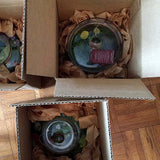 Jessica Grenier Photography Terrarium Packaging