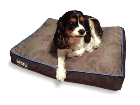 Thick Orthopedic Dog Bed Better World Pets