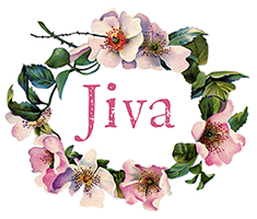 Jiva Clothing