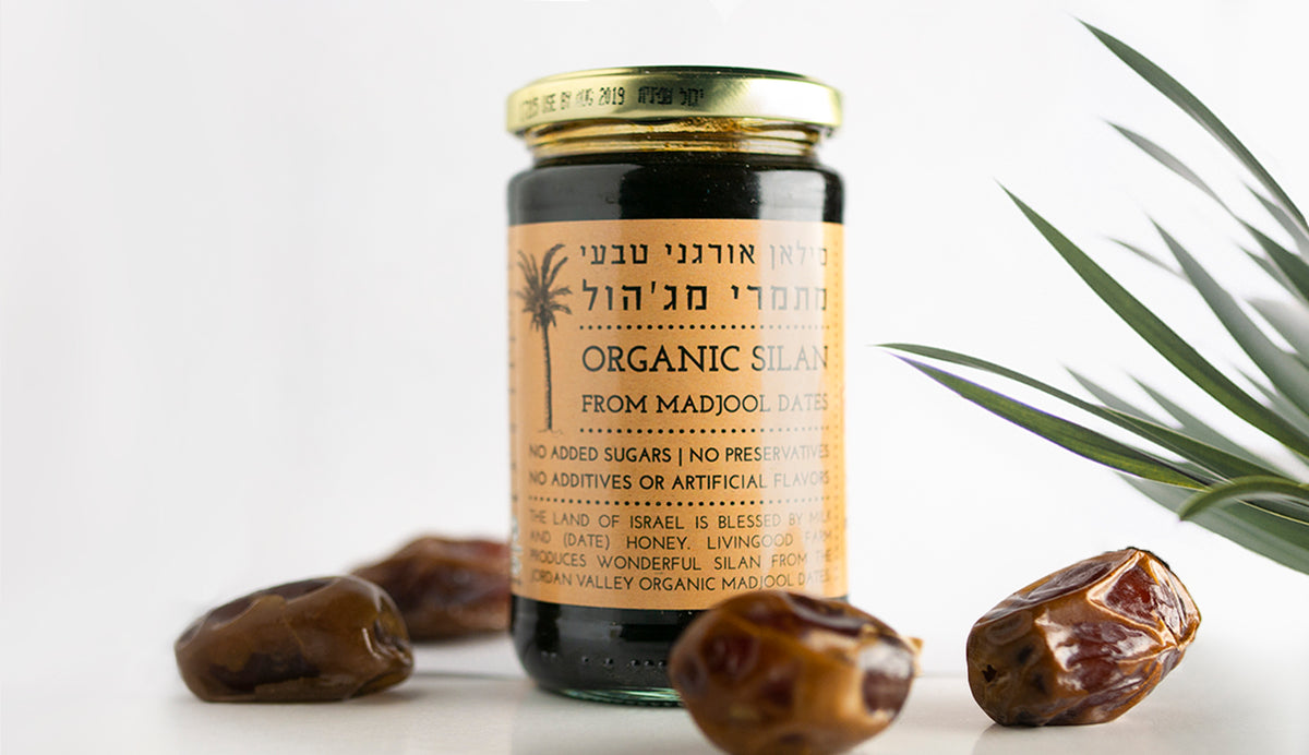 Date Silan (Syrup) - Blessed Buy Israel