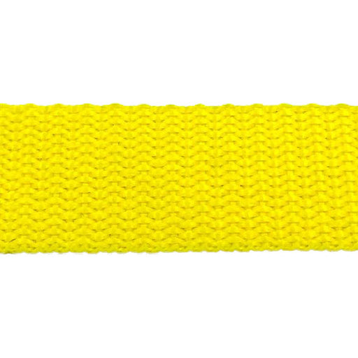 "Heavy Weight Polypropylene Webbing (1"") 850P 1"