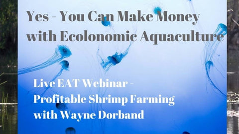 Yes - You Can Make Money with Ecolonomic Aquaculture - Commercial Shrimp #4