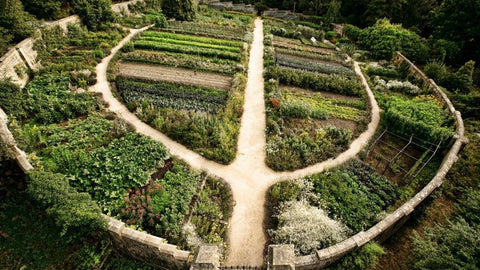 Transition to a Permaculture Lifestyle? William Horvath #13