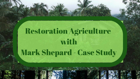 Mark Shepard Case Study 6 - Special Video Edition