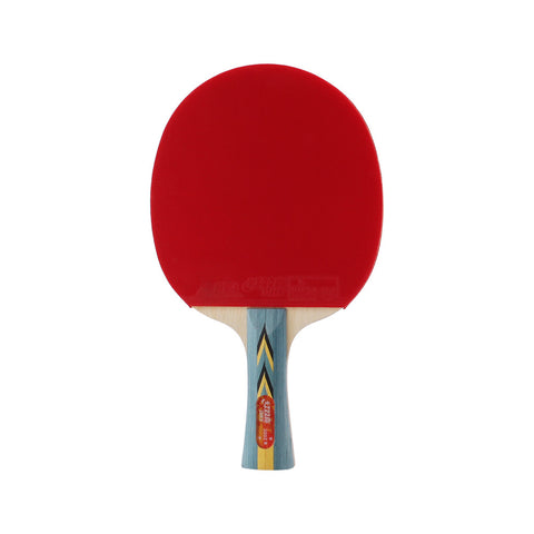 DHS Table Tennis Racket X3002