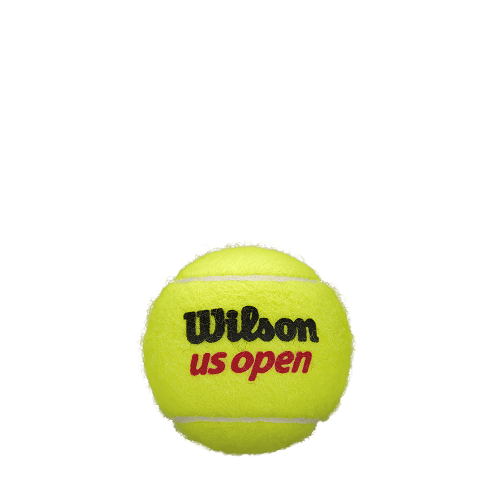 WILSON Us Open Tennis Balls WRT106200 | Toby's Sports