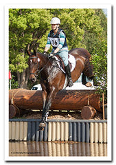 Alleviate is an Ultra-absorbable organic magnesium and boron for horses.