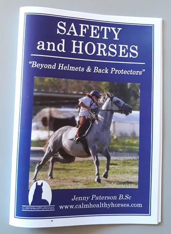 Horse safety booklet