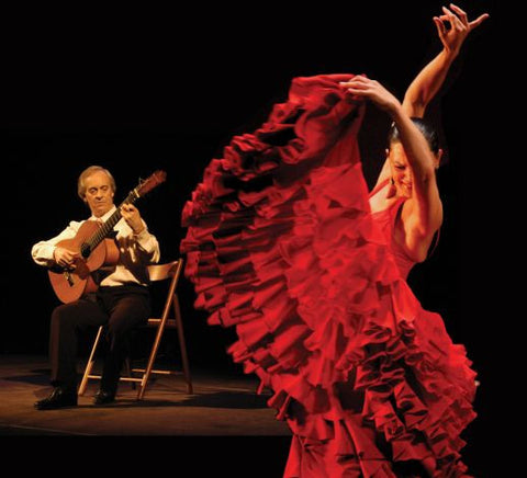 Flamenco Spanish Guitar