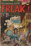 "Fabulous Furry Freak Brothers #  1,  1st print ""A"""
