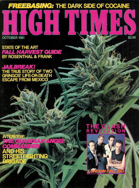 High Times Magazine #  74 - October 1981