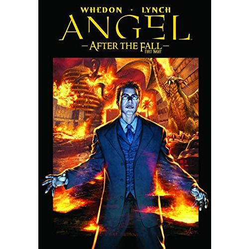 Angel After the Fall Vol. 2 First Night TP