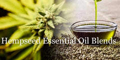 Hempseed Essential Oil Blends