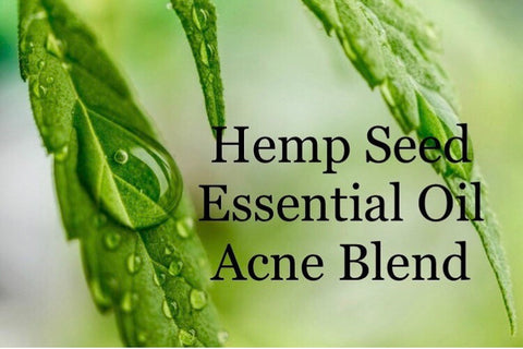 Hempseed Essential Oil for Acne