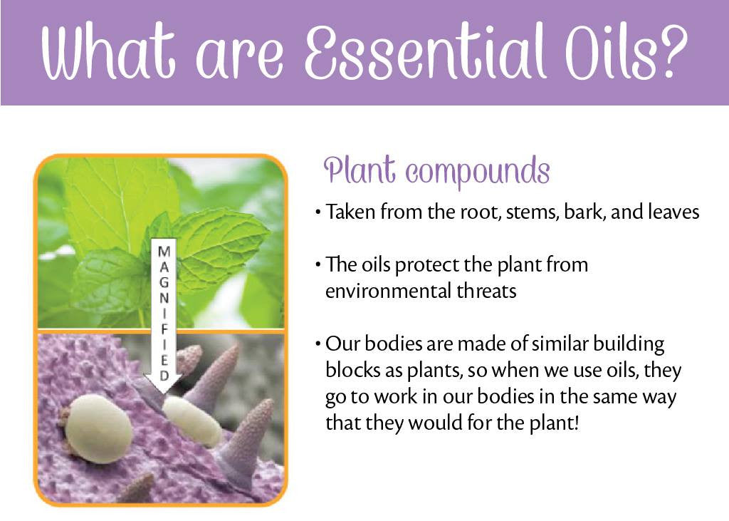 Click here to learn about Essential Oils.