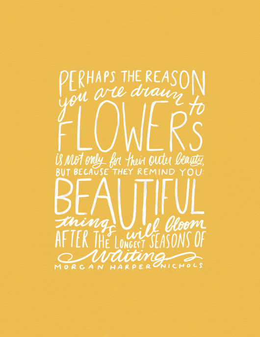 Perhaps the reason you are drawn to flowers...