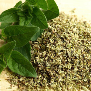 披薩草 | Oregano leaves | GF-oregano