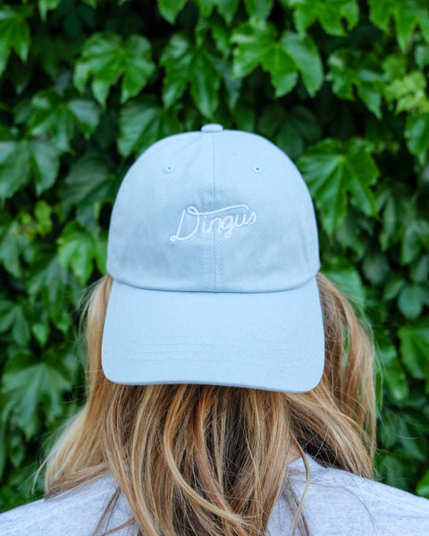 Dingus Dad Hat
