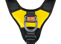 Petzl Avao BOD Fast International Harness Mid Ring