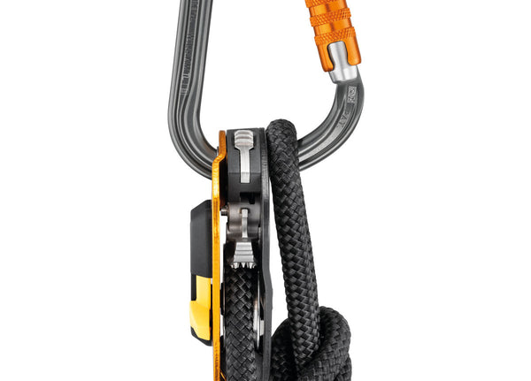 Petzl William Carabiner Connection Pacific Ropes