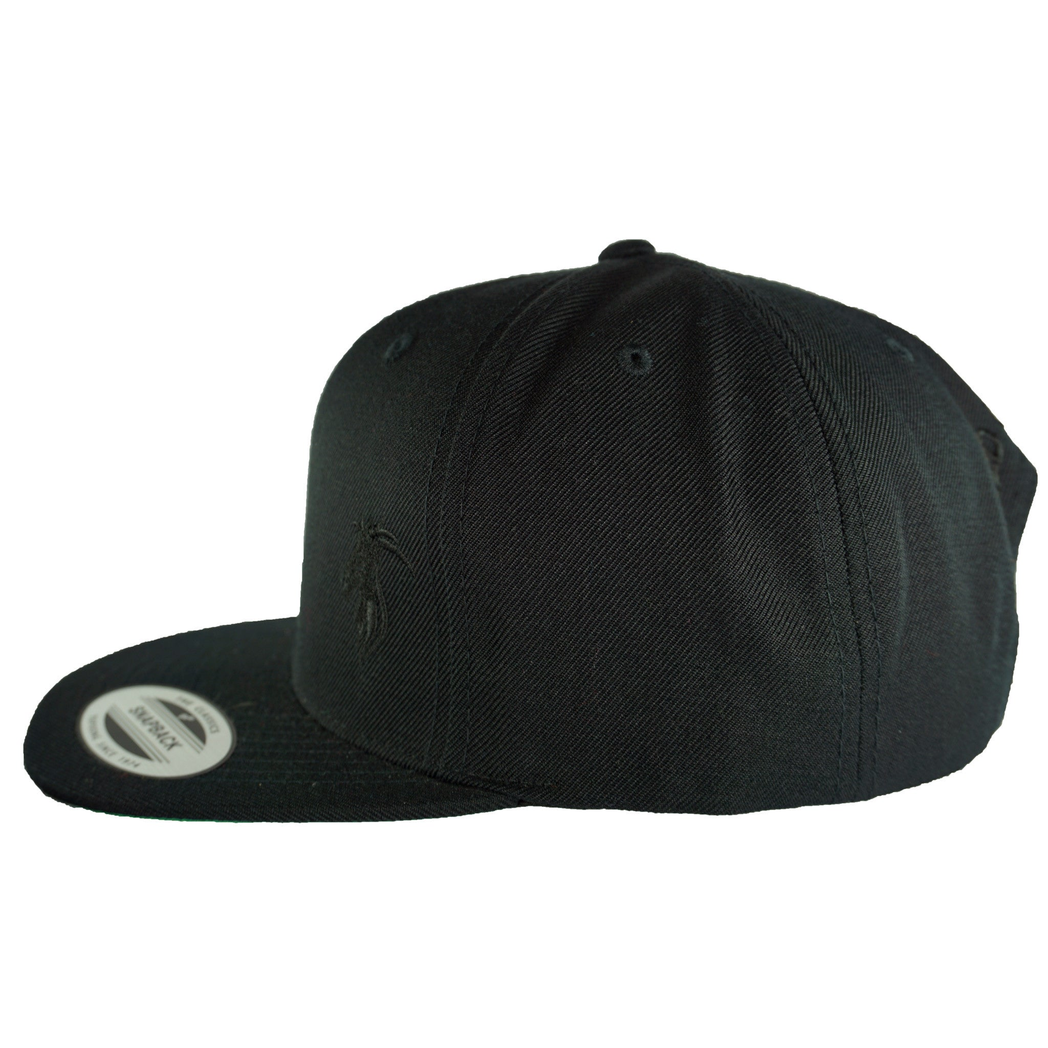 Black Snapback with Black logo