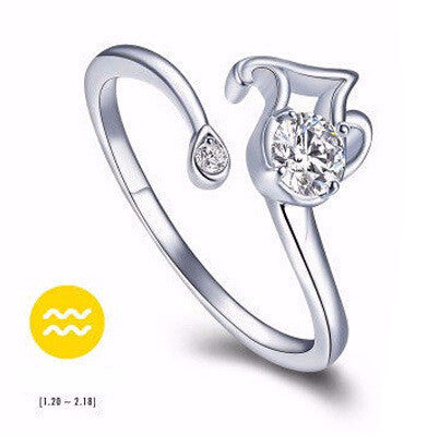 Aquarius Silver Zodiac Ring
