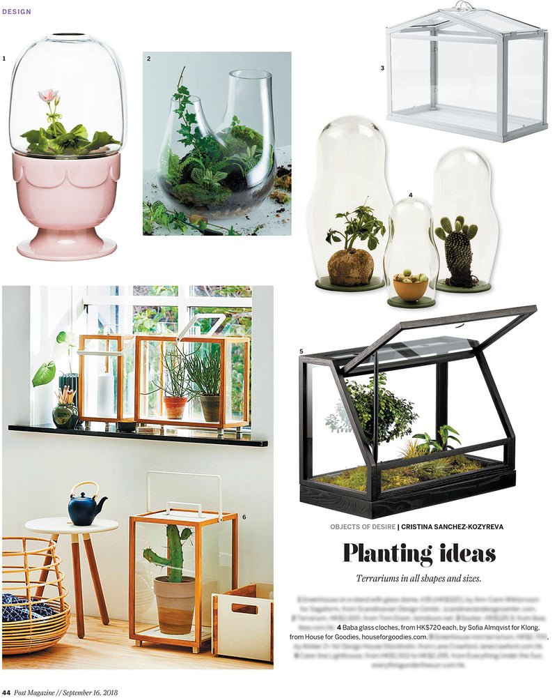 SCMP Terrariums | Sep 2018