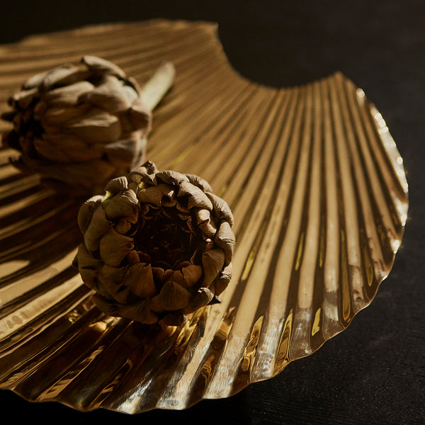 CONCHA Decorative Dish
