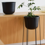 Wire Pot | Black