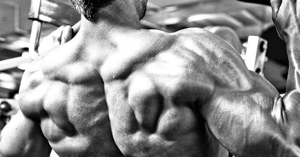Back Exercises You Don't Do, And Probably Should