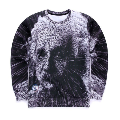 Sweaters - Transcendent Einstein Sweater