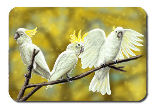 Postcard - Australiana Cockatoos