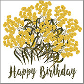 Small Cards (Pack of 10) - Happy Birthday Wattle