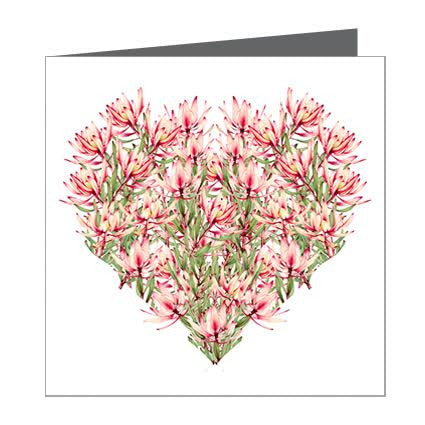 Card - Heart Native (Leucadendron)