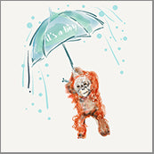 Small Cards (Pack of 10) - Baby Boy Chimp