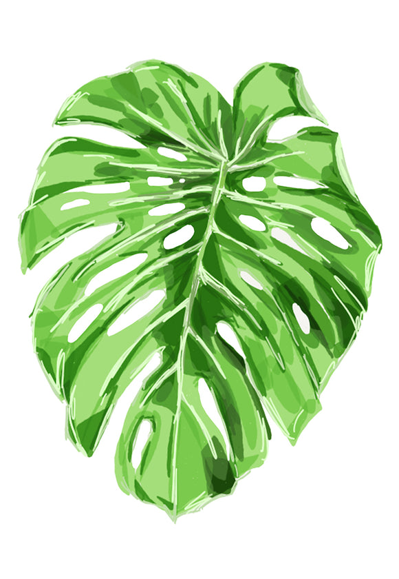 Print Botanic - Monsteria Leaf