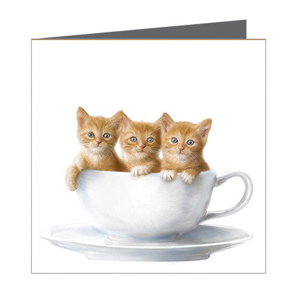 Card - Cats in a tea cup