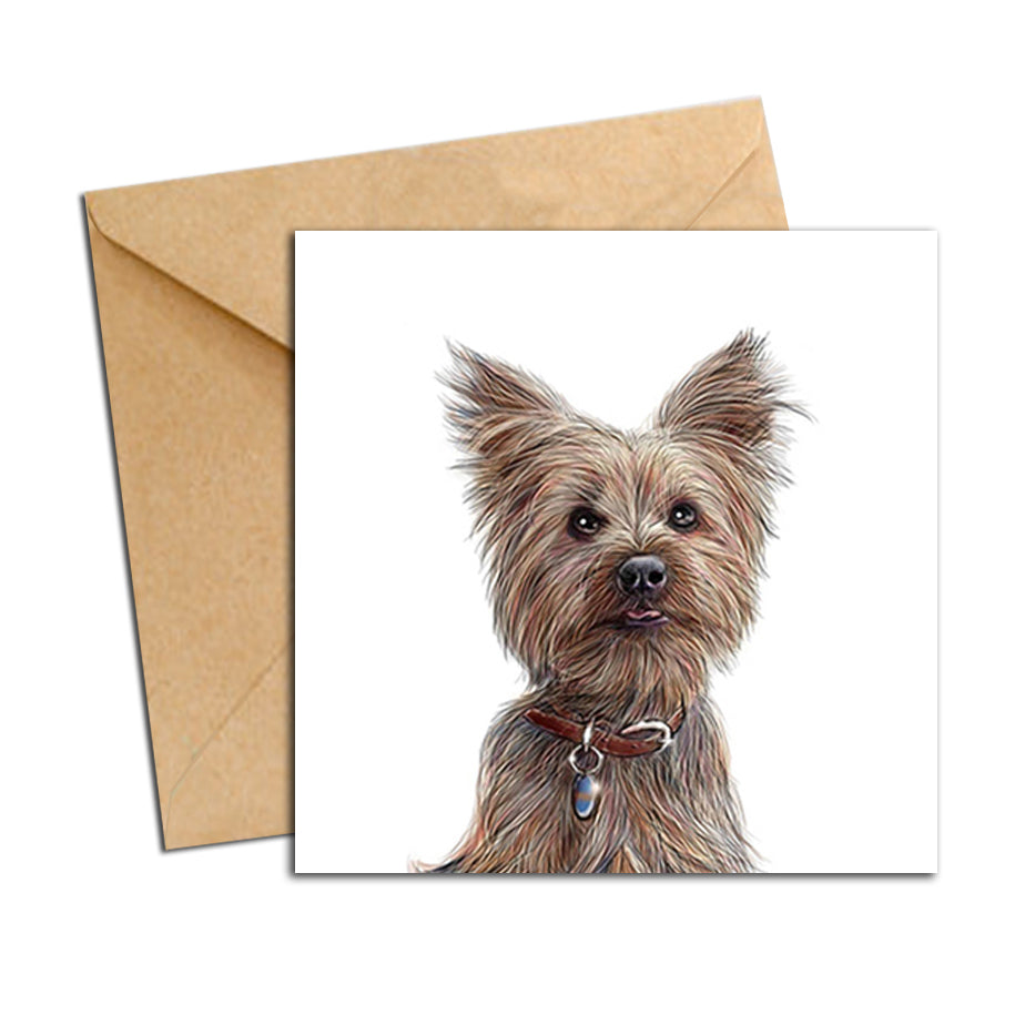 Card - Dog - Yorkshire Terrier