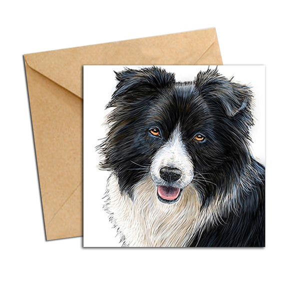 Card - Dog - Border Collie