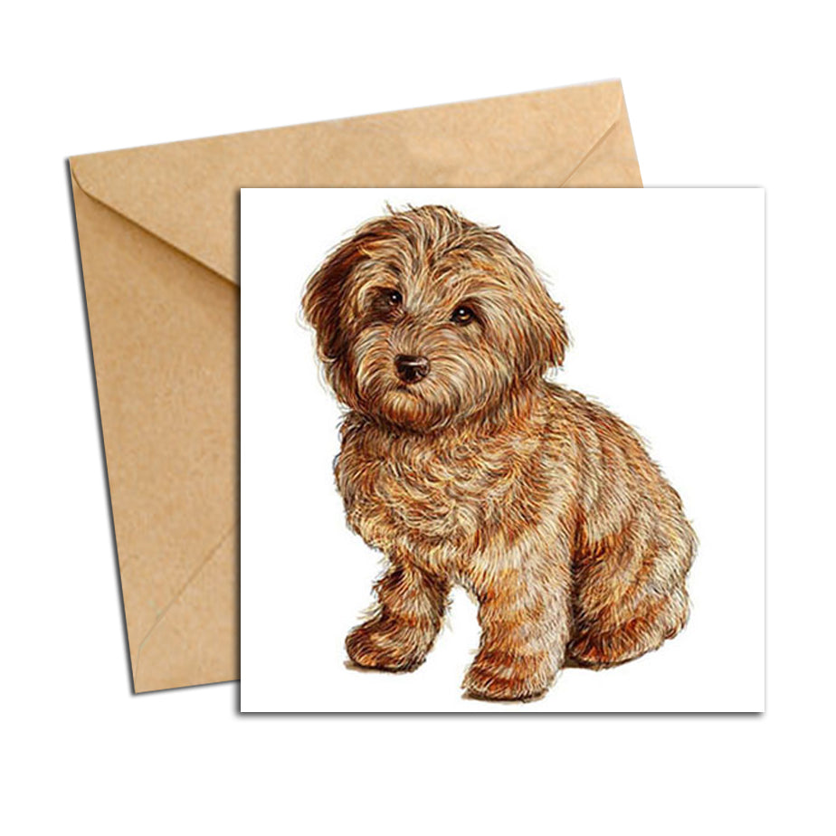 Card - Dog - Labradoodle puppy