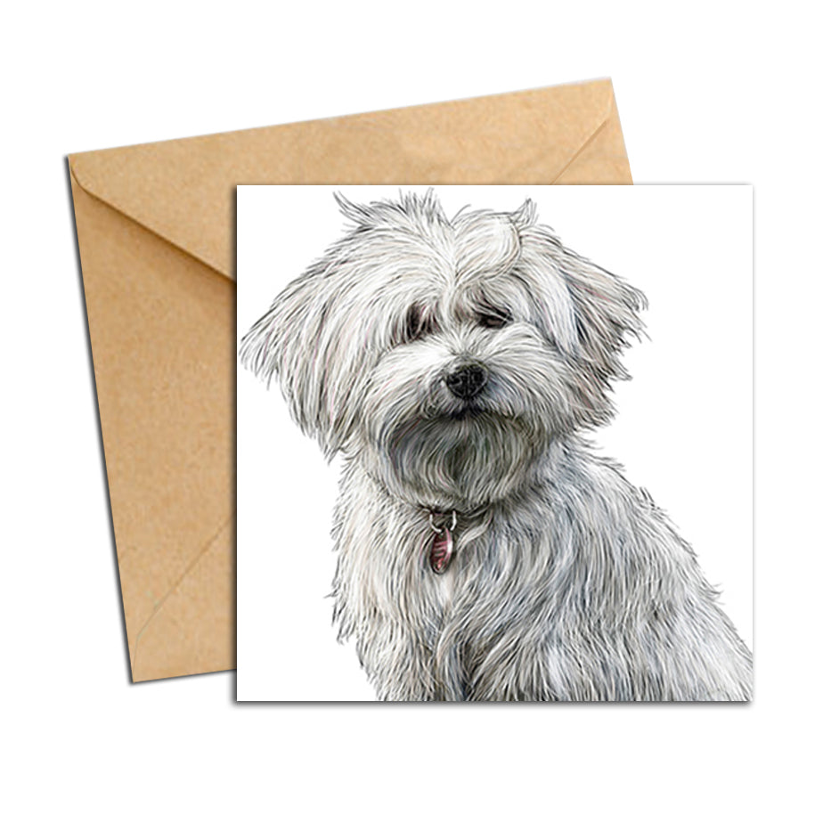 Card - Dog - Bichon White