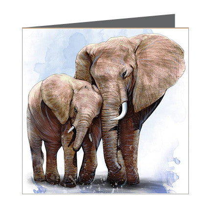 Card - Elephant and Calf
