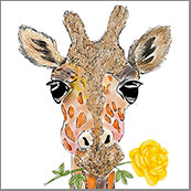 Small Cards (Pack of 10) - Giraffe w Rose