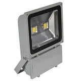 100W Led Floodlight Bright &Energy Saving 1 Year Warranty