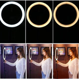 25cm Dimmable LED Ring Light Lamp with 52.5cm Light Stand Light Kit