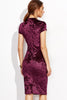 CRUSHED VELVET JAZZY PENCIL DRESS RTS