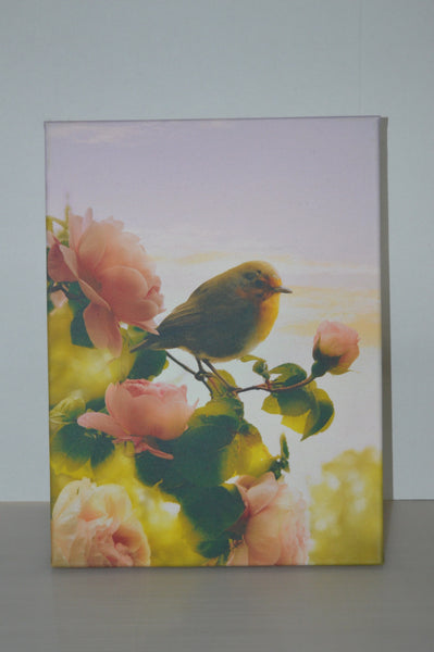 Stretched canvas - Robin and roses