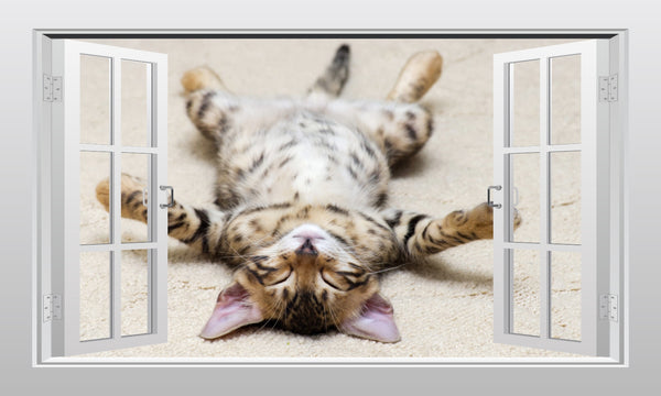 Sleeping kitten 3D Window Scape wall art sticker - Enhance With Vinyl